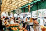 Italian Market Tour
