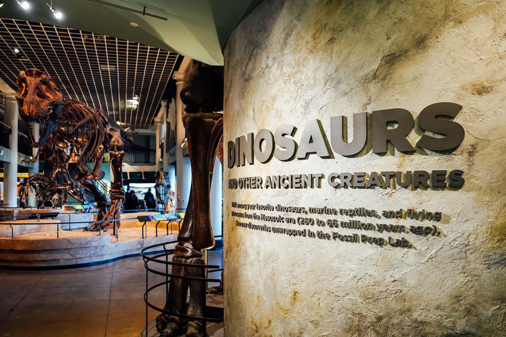 academy of natural sciences